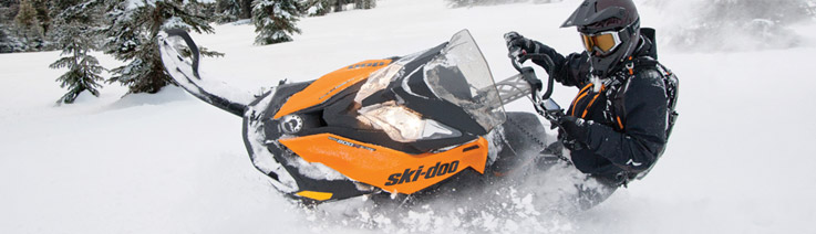 Ski-Doo Paint - ColorRite